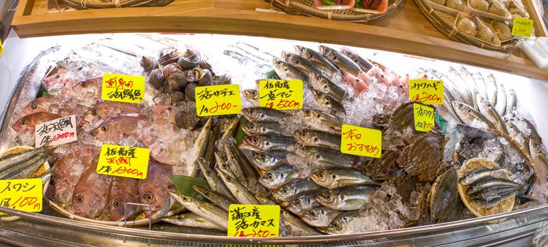 ヤッチャバ鮮魚
