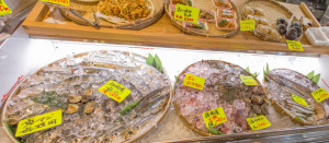 5月31日おすすめの鮮魚